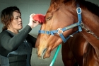 HEALING TOUCH: Trainer Kelly Burne brushes Survived. Photo/Warren Buckland