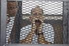 Peter Greste. Photo / AP