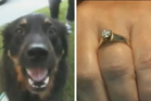 Tucker the dog had swallowed Lois Matykowski ring.