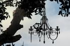 Tree Palace by Craig Sherborne.