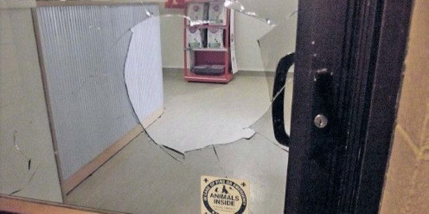 Thieves smashed their way into the SPCA and stole cash. Photo/File