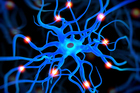 POEMS syndrome is detrimental to nerve cells. Photo / Thinkstock