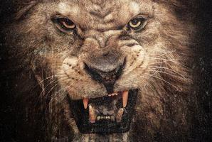 Album cover for Animal Ambition.