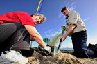 Kerry Willoughby and Chris Ward help out in the Coast Care working bee. Photo/George Novak