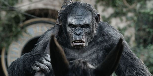 Koba as played by Christopher Gordon in Dawn of the Planet of the Apes.