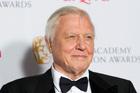 David Attenborough. Photo / AP