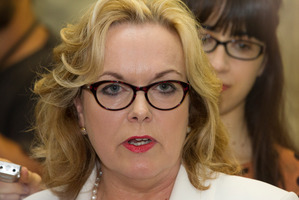 Judith Collins' Twitter use has landed her in hot water. Photo / Mark Mitchell