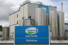 Fonterra is the world's fourth largest dairy company, with turnover of US$15.3b. Photo / Steve Carle
