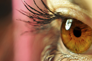 Regular eye tests could lead to early diagnosis of Alzheimer. Photo / Lakeland