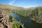 Runanga Lake near Fernhill. Photo / Warren Buckland