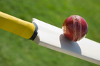 Former England batsman Paul Collingwood has helped to prepare Scotland. Photo / Thinkstock