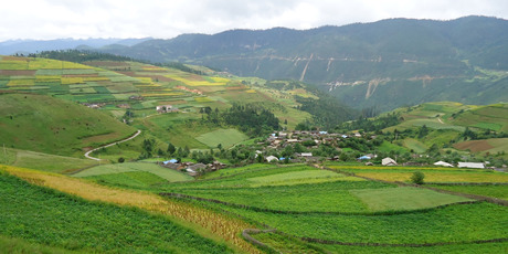 Yunnan is a major producer of rice, grains, tea and tobacco and hills throughout the region are covered in crops. Photo / Duncan Gillies