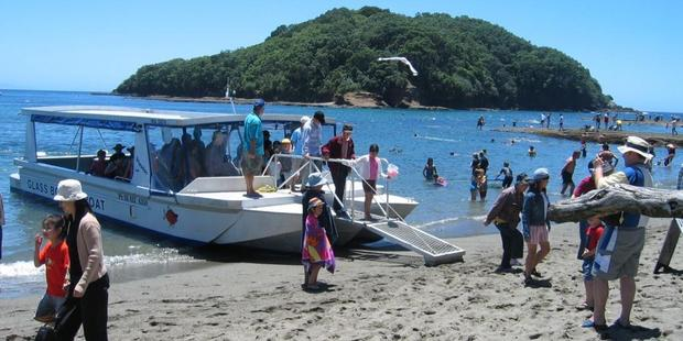 The glass-bottom boat at Goat Island Marine Reserve provides a fascinating look at what's beneath the waves.