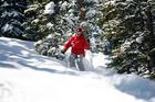 David Grogan negotiates fresh powder among the trees at Aspen Snowmass. Photo / Sarah Ivey