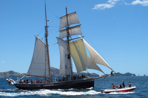 Crew members on tall ship R.Tucker Thompson pulled the man from the water in the Bay of Islands.