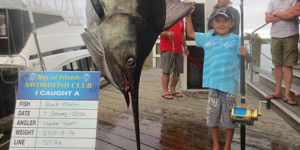 Eight-year-old Hunter Scott landed a monster marlin 10 times his own weight. Photo/Supplied