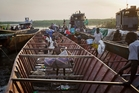 Dinkas flee by the thousands, crossing the White Nile in small boats in search of safety as Nuer rebels control the city of Bor across the river. Photo / AP