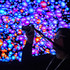 A trade show attendee shoots video of an LG Ultra HD 3D wall display. Photo / AP