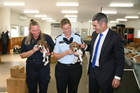 Darcy and Darwin - and some human helpers - at the Auckland Biosecurity Centre today.