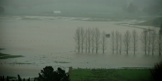 Flooded farm land in the far north after a storm battered the top of the North Island. Photo / Dean Purcell