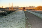 Frosts can be expected throughout the Bay this week. Photo/file