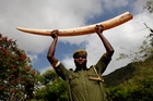 Rangers in Kenya battling poachers know they risk their lives going to work each day. Photo / AP