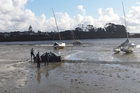 Police said a dry cleaning bill was the only damage done after two men took to the mudflats of the bay near Meola Reef, Westmere, to evade them. Photo / Simon Duffy