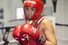 New Zealand boxer Alexis Pritchard. Photo / Greg Bowker
