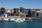 Wellington's central business district. Photo / Mark Mitchell