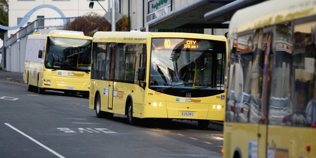Bay Hopper buses have been the subject of complaints from passengers and motorists. Photo / File