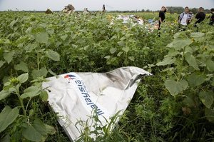 A piece of MH17 near the village of Rozsypne, Ukraine. Photo / AP