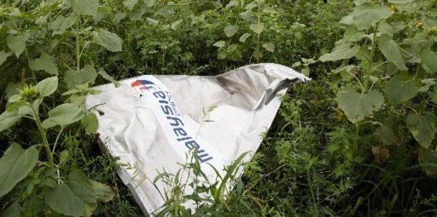 A piece of MH17 near the village of Rozsypne, Ukraine. Photo / AP