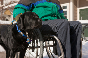 A woman with multiple sclerosis and her service dog. Photo / Thinkstock