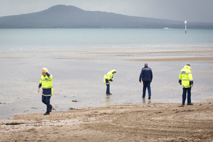 Police search St Heliers beach in Auckland. Photo / Sarah Ivey