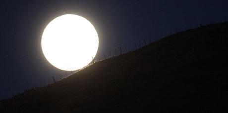 Moon rise over the Havelock North hills near Te Mata Peak tonight. Photo / Paul Taylor