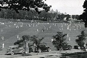 Club cricket on the sportsground of the Auckland Domain. Photo / NZ Herald Archive