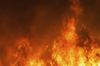 Firefighters are at the scene of a blaze at Paraparaumu School. Photo / File