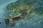Rena debris on Astrolabe Reef. Photo / File