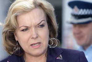 Justice minister Judith Collins. File photo / Ben Fraser