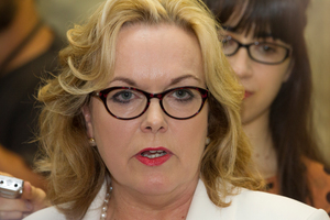 Judith Collins. Photo / NZH