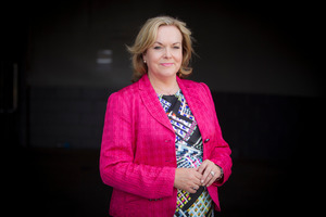 ACC Minister Judith Collins. Photo / Michael Craig