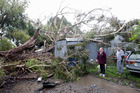 A fallen tree in Napier brought down by Cyclone Ita. Shed owner Christina Mitchell (l) and Luke Mitchell. Big insurer IAG's profits are up 10per cent. Photo / APN