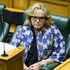 Justice Minister Judith Collins responding to queries over her relationship with Oravida during question time in Parliament. Photo / Mark Mitchell