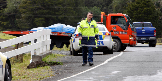 Three dead horses are loaded on to a truck after wandering on the road at Mokau. Photo / John Stone