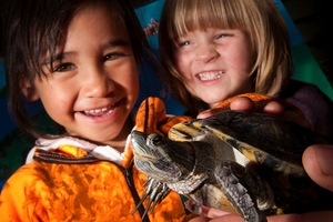 FLIPPERED FRIEND: Mason Playle, 4, (left) and Elsie Papps, 3, are stoked to have Flippy the much loved turtle back. PHOTO/BEN FRASER 270814BF2