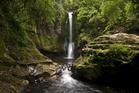 Kaiate Falls, Tauranga, New Zealand. Photo / Getty Images