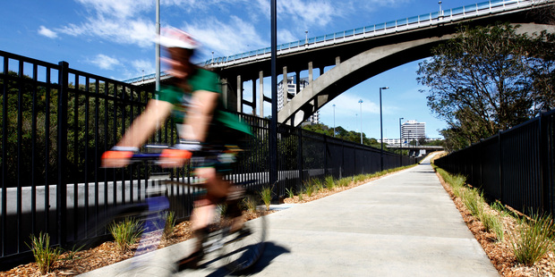 The new Grafton Gully cycleway in Auckland. Photo / Chris Gorman