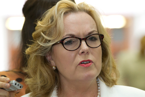 Former justice Minister Judith Collins. Photo / NZ Herald