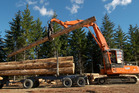 Forest product prices fell 6.5 per cent and volumes were down 8.3 per cent in the June quarter.  Photo / File