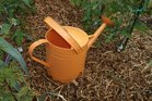 A plastic or galvanised iron watering can?